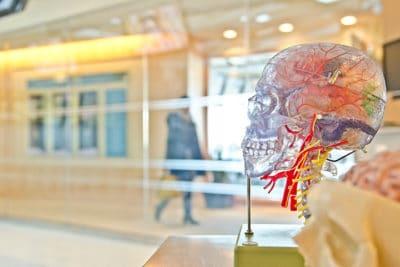 A Esclerose Múltipla e as suas formas de Reabilitação